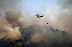 Cyprus fires